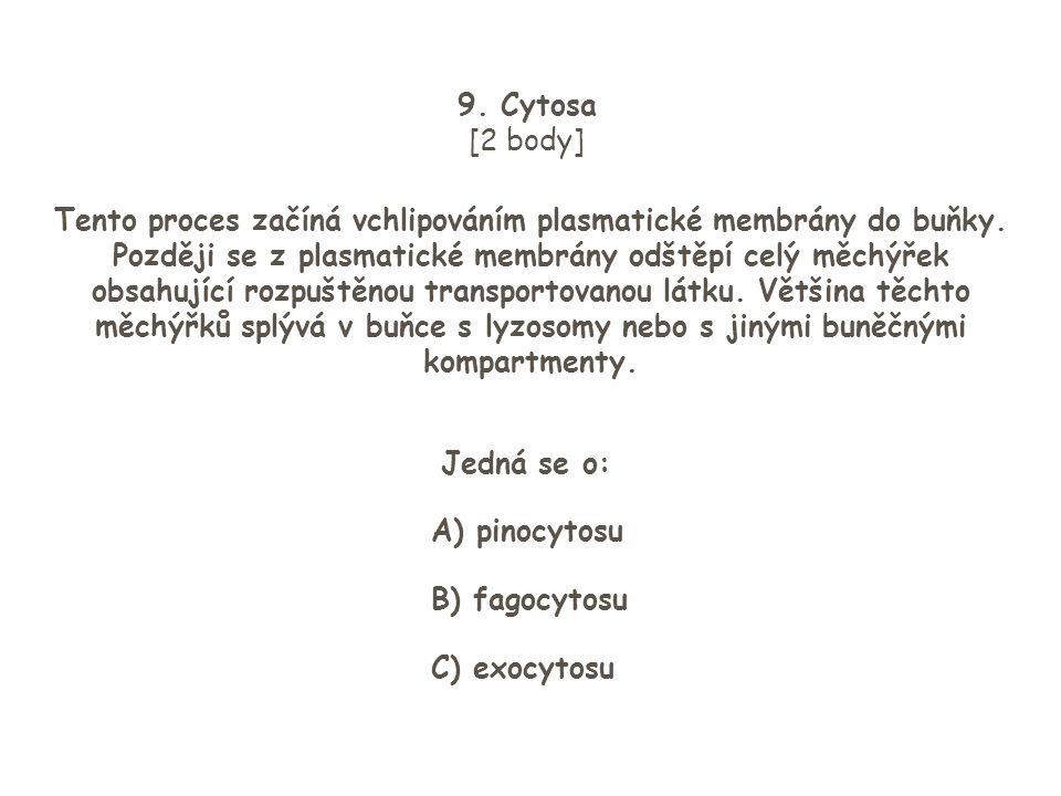 9. Cytosa [2 body]